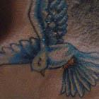 Small Dove Neck Tattoo
