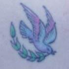 Red Winged Dove with Olive Branch Tattoo