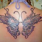 Back Butterfly Wings Tattoo