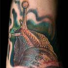Snail Foot Tattoo