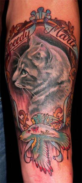 speedymarie cat dead swallow tattoo Cat Portrait with Dead Swallow